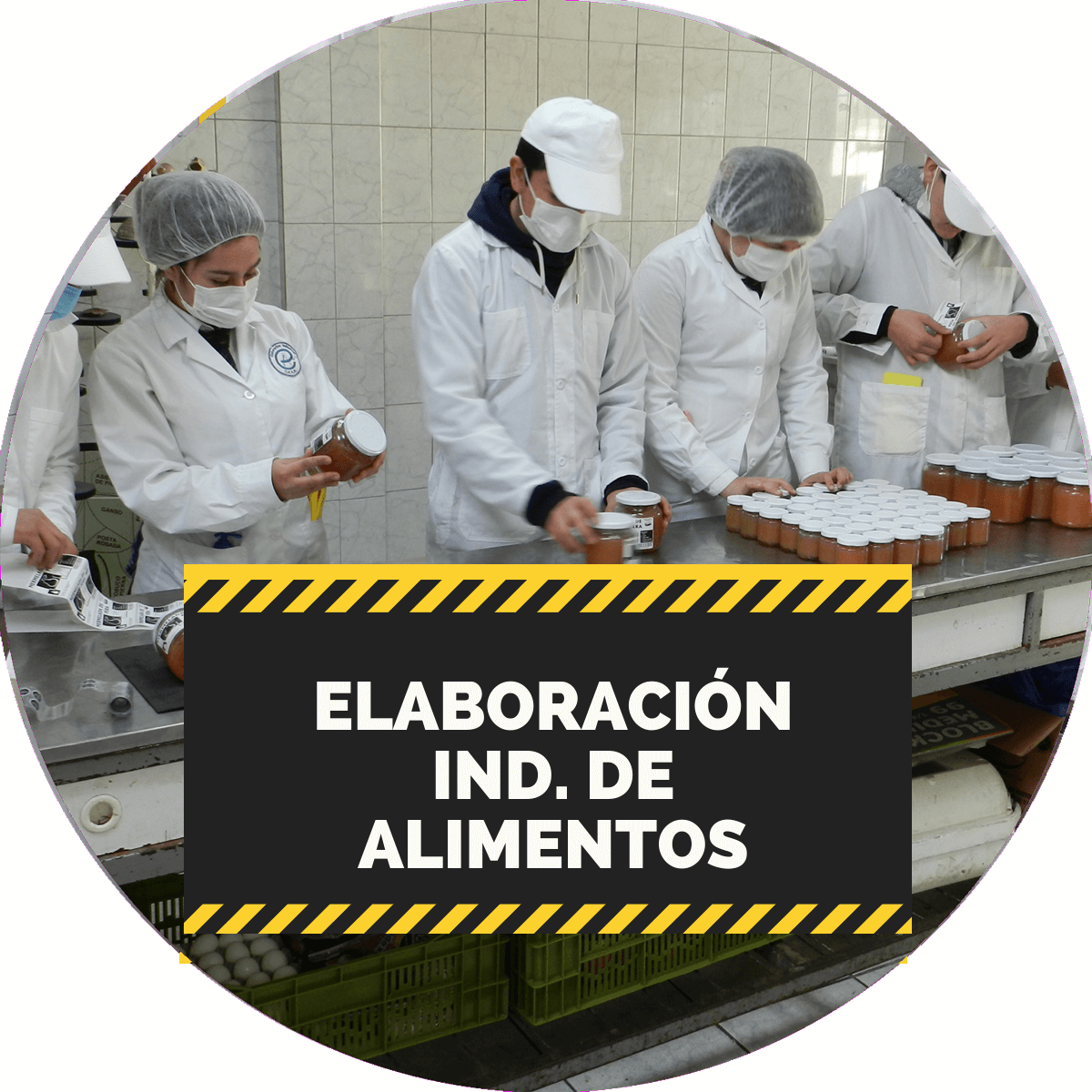 elaboracion industrial de alimentos